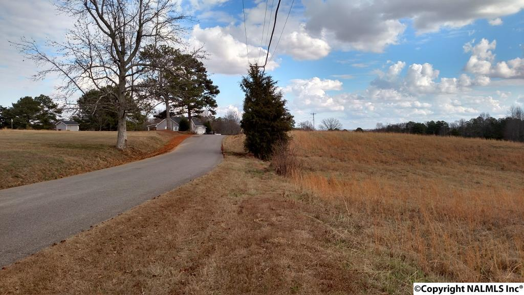 Photo of home for sale at Wyeth Mountain Road, Guntersville AL