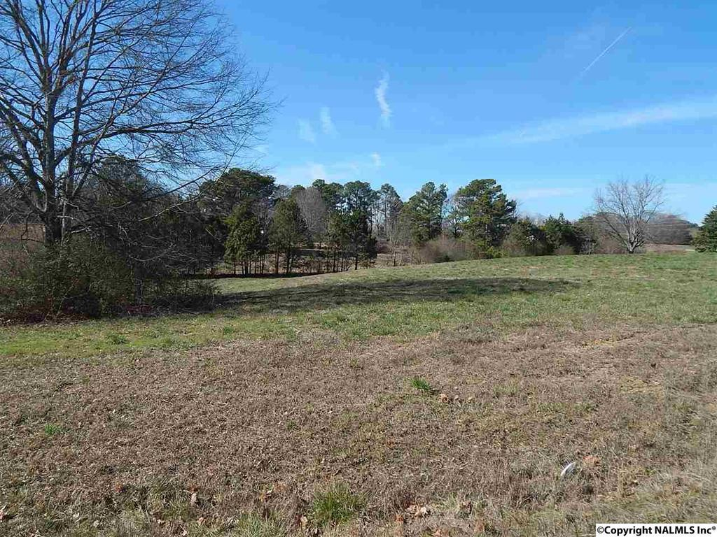 Photo of home for sale at Locust Drive, Arab AL